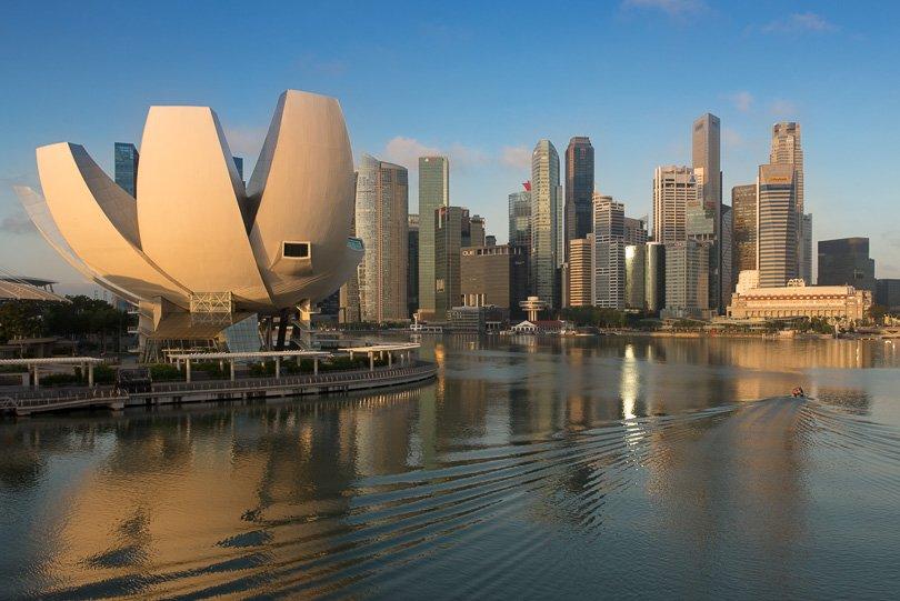 heber foto singapur supertrees marina bay merlion. Black Bedroom Furniture Sets. Home Design Ideas